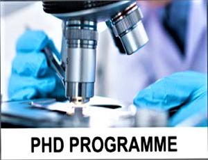 Registration to the Doctoral School Programme in Biomedical Sciences is starting!